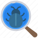 examine, bugs, search, computer, science icon