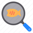 cooking, fish, food, kitchen, pan