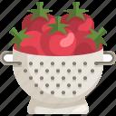 colander, kitchenware, meal, strainer, tomato, vegan, vegetables icon