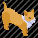 baby, cartoon, corgi, dog, funny, isometric, logo