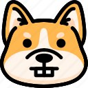 corgi, emoji, emotion, expression, face, feeling, nerd icon