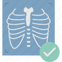chest, radiology, ribs, xray icon
