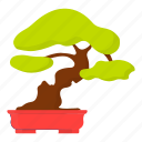 bonsai, japanese, plant, traditional, tree icon