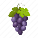 culture, sightseeing, travel, grapes, bunch, country, spain icon