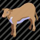 baby, cartoon, cow, field, isometric, logo, retro