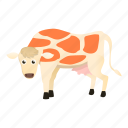 brown, cow, food, white