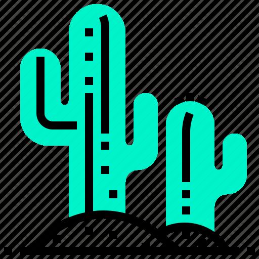 cactus, plant, west, wild icon