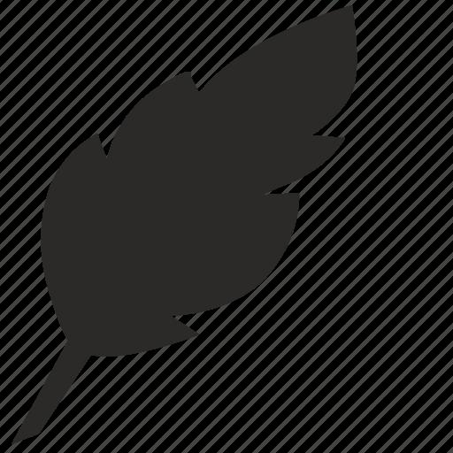feather, instrument, literature, write icon