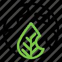 earth, ecology, green earth, world icon