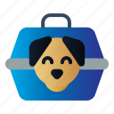 box, carrier, dog, pet, vet