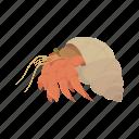 animal, crustacean, hermit crab, invertebrate, sea creature, strawberry hermit crab icon