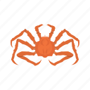 alaskan king crab, crab, crustacean, king crab, sea creature, seafood