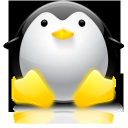 organizer icon