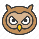 animal, bird, face, head, owl, wisdom icon