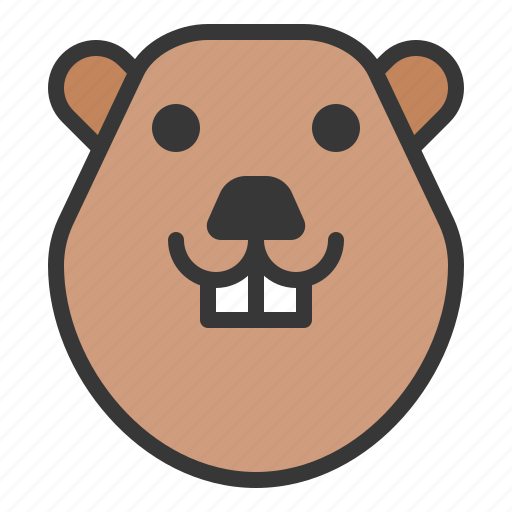 animal, bever, face, head, rodent, zoo icon