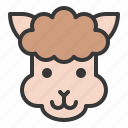 alpaca, animal, cute, face, farm, head, llama icon