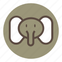 animal, bear, cute, elephant, park, tiger, wild, zoo icon