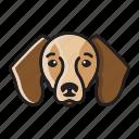 beagles, cartoon, cute, dog, head, set icon