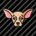 cartoon, chihuahua, cute, dog, head icon
