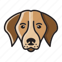 cartoon, cute, dog, head, labrador, set icon