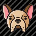 cartoon, cute, dog, head, pug, set icon