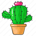 cactus, cartoon, flower, line, plant, set, template icon