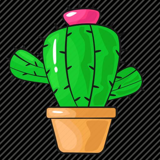 Cactus, cartoon, flower, line, plant, set, template icon | Icon ...
