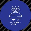 beet, beetroot, food, radish, vegetables icon