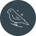 chestnut, finch, sparrow icon
