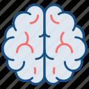 awareness, brain, brainstorming, medical, mind, neurology, neuroscience