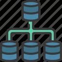 data, hierarchy, storage, information, structure