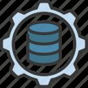 data, management, storage, information, database