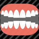 artificial teeth, dental, dentures, jaw, teeth icon