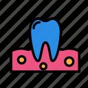 dental, gum, medicine, oral, stomatology