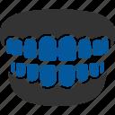 care, dental, dentistry, gum, report, teeth, tooth