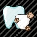dental care, stomatology, teeht, tooth icon