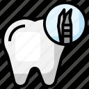 tweezer, dentistry, medical, dentist, tools