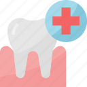 care, dental, dentist, molar, toolsappliances, treatment icon