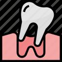 bodyparts, dental, dentalcare, dentist, healthcare, medical icon