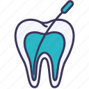canal, dental, endodontics, medical, treatment, tooth, root