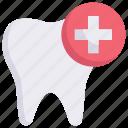 dental care, dental health, dental treatment, dentist, health, healthcare, tooth
