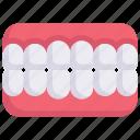 artificial teeth, dental care, dentist, dentures, health, orthodontic, tooth