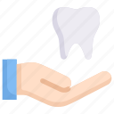 care, dental care, dentist, hand, health, hold tooth, tooth