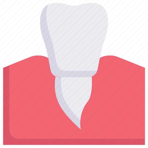 Dental care, dentist, gum, health, premolar, rot, tooth icon - Download on Iconfinder
