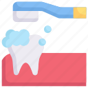 cleaning, dental care, dentist, health, tooth, tooth brushing, toothbrush