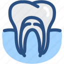 dental, dental treatment, dentist, dentistry, root canal, teeth, tooth icon