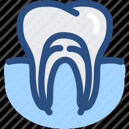 dental, dental treatment, dentist, dentistry, root canal, teeth, tooth icon