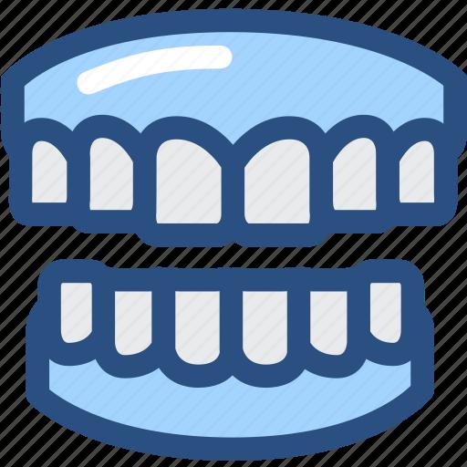 dental, dentist, dentistry, denture, gums, medical, tooth icon