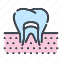 dental, dentist, dentistry, gum, nerve, teeth, tooth icon