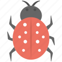 bug, ladybird, malware, threats, virus icon
